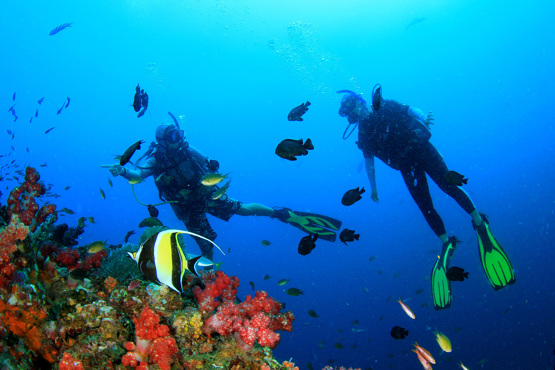 7d7432a172 Ultimate Philippines Diving Guide - Tripfuser Travel Blog - Hand ...