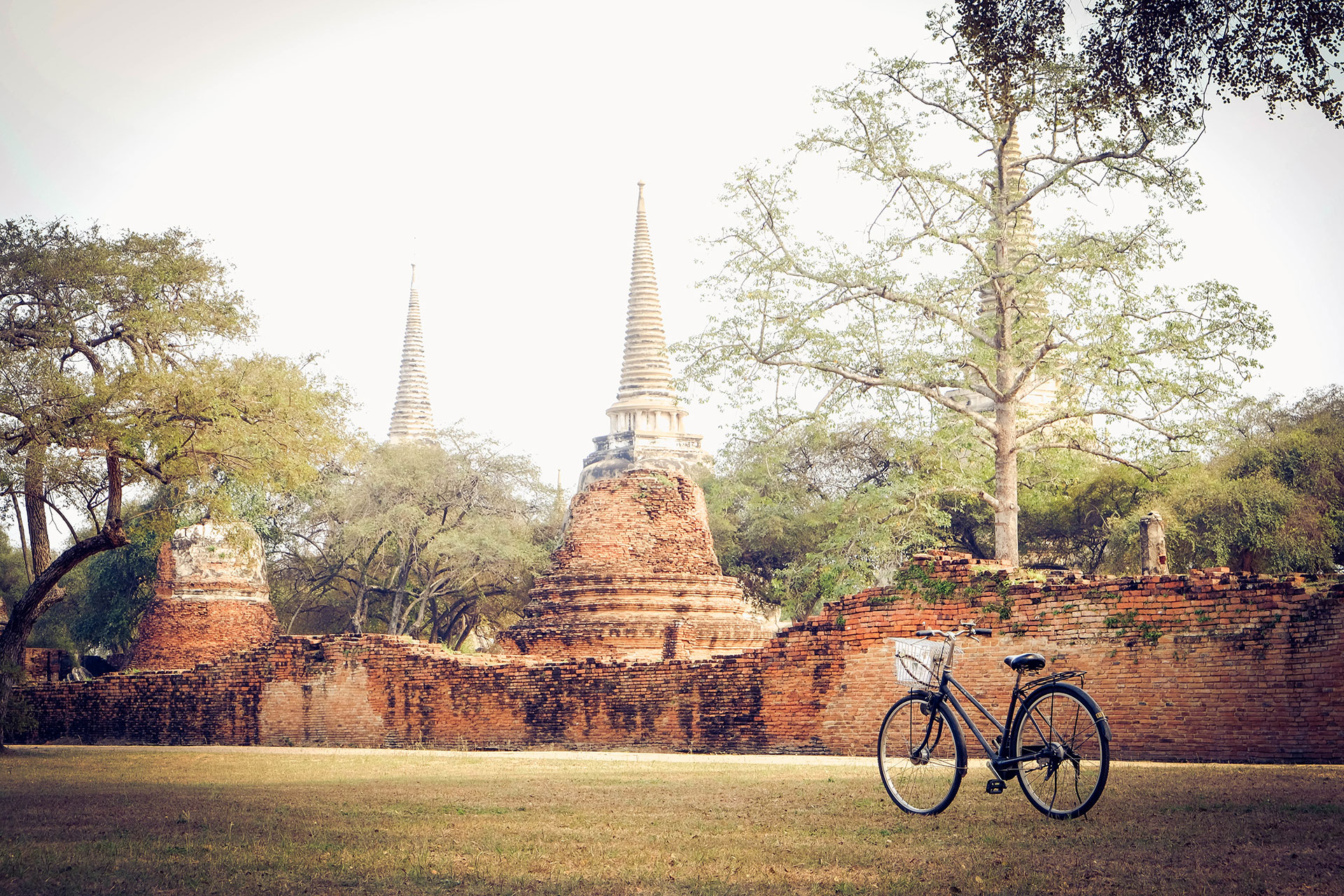 The Ultimate Guide to Thailand Cycling - Tripfuser Travel