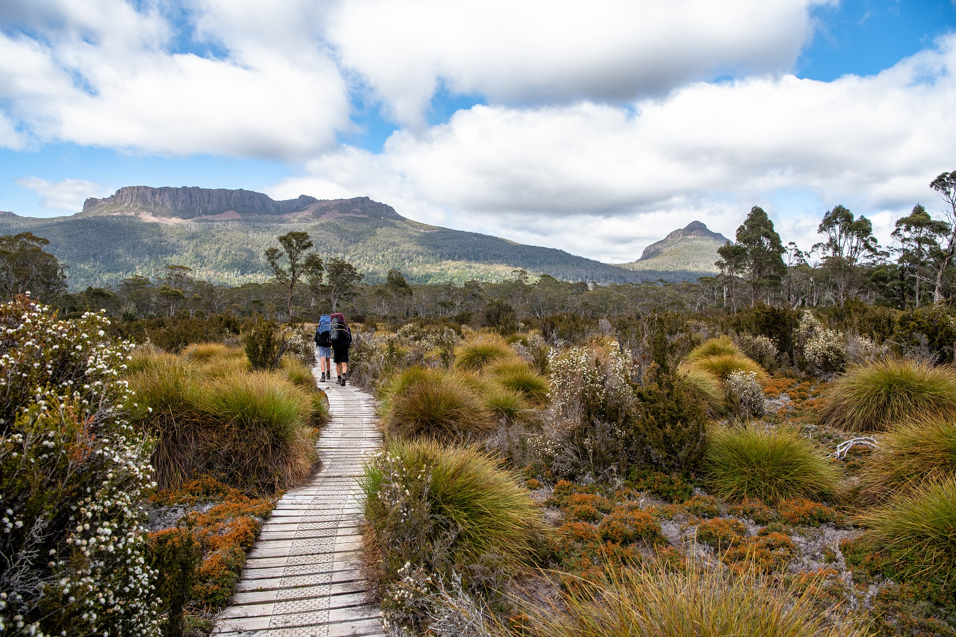 Cradle Mountain Overland Track
