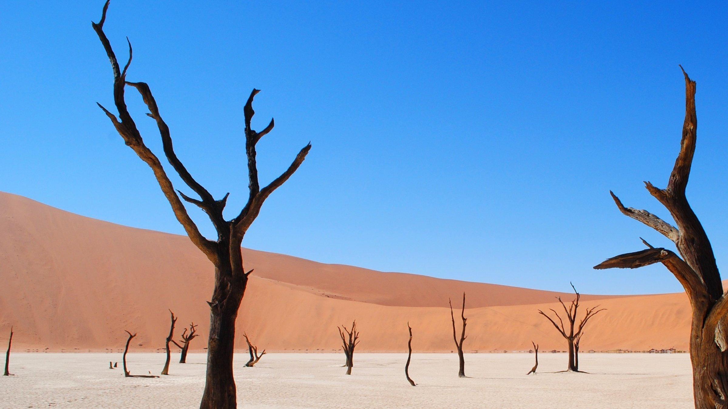 3-Day Namib Desert Camping - Namibia Itinerary