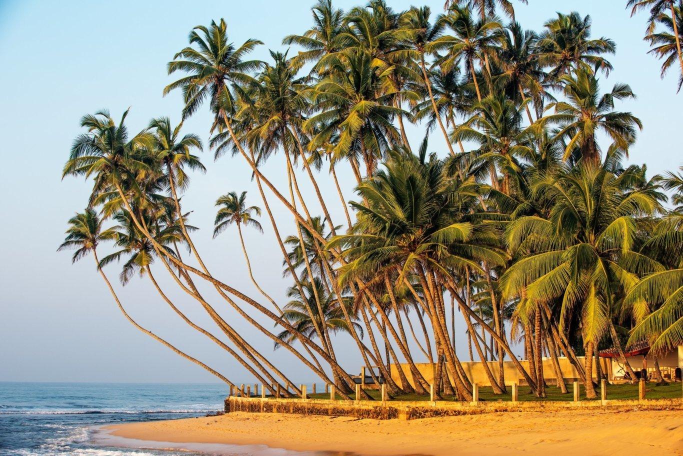 7-Day Island Indulgence in Sri Lanka - Sri Lanka Itinerary