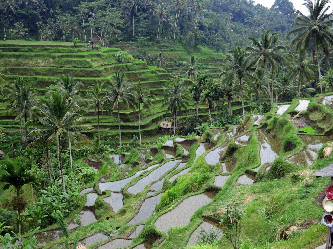 14-Day Bali Hills, Beach and Tradition - Indonesia Itinerary