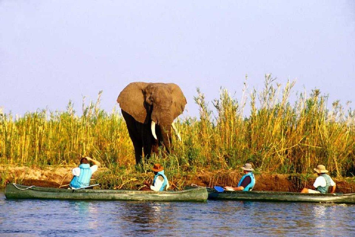 4-Day Breathtaking Safari in Lower Zambezi - Zambia Itinerary
