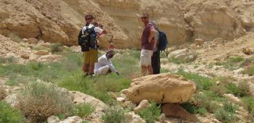 Egypt Hiking Trekking Tours 6 Customisable Trips