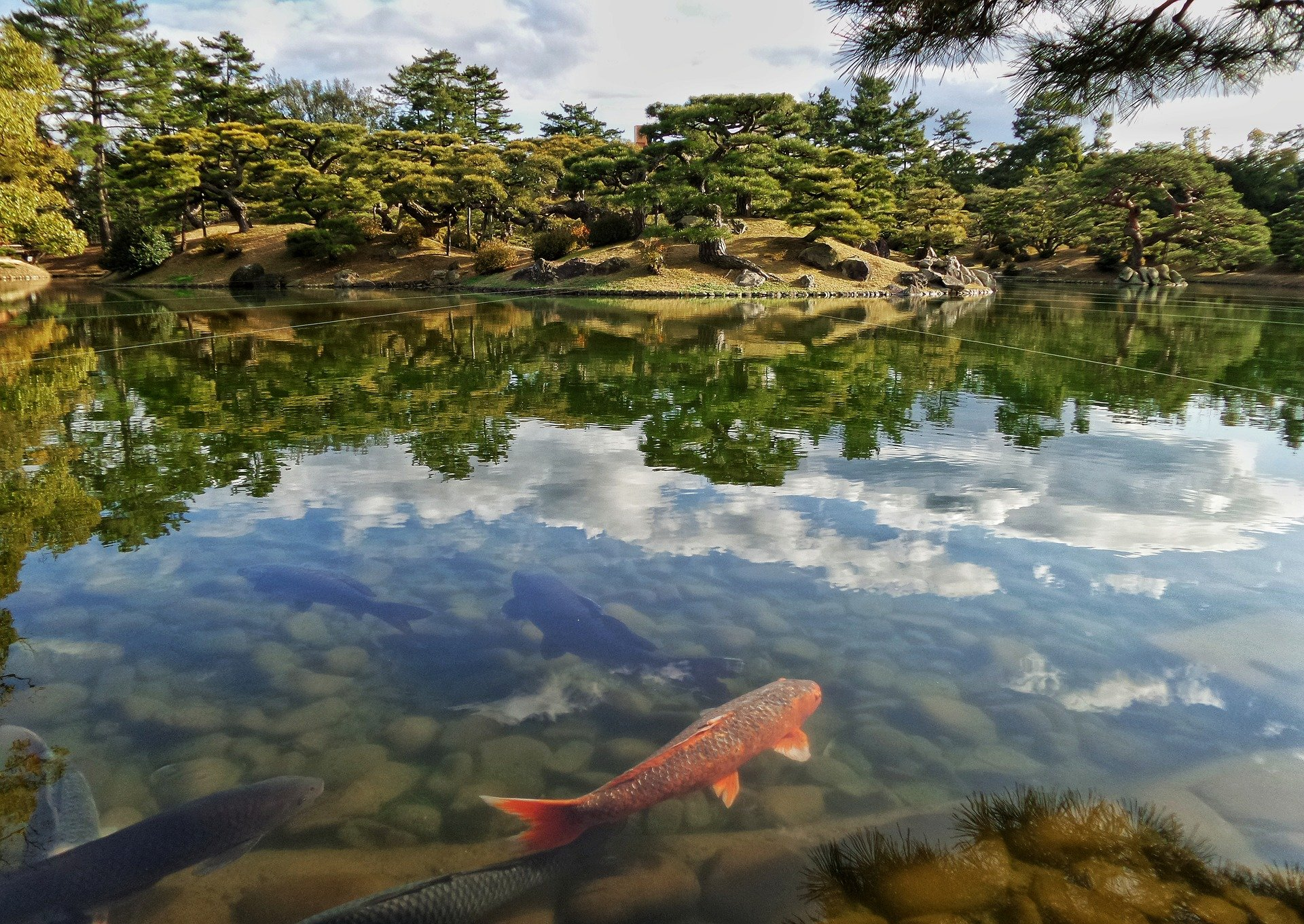 6-Day Nature Lovers Tour of Shikoku - Japan Itinerary