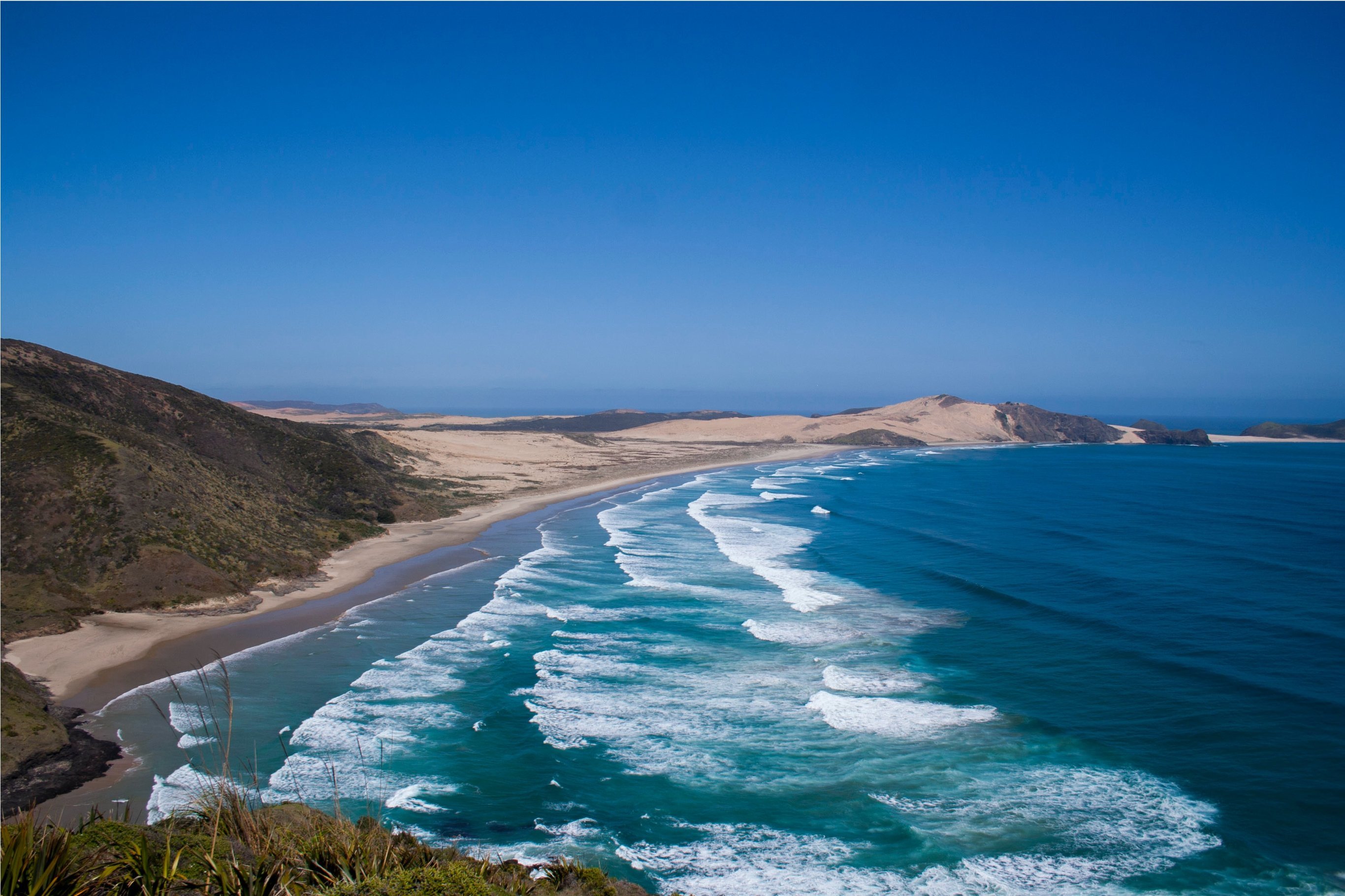 3-Day Discover Northland & Bay of Islands