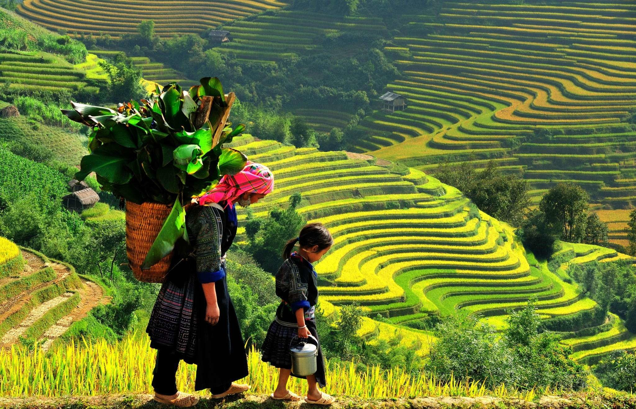 13-Day Vietnam Family Adventure - Vietnam Itinerary