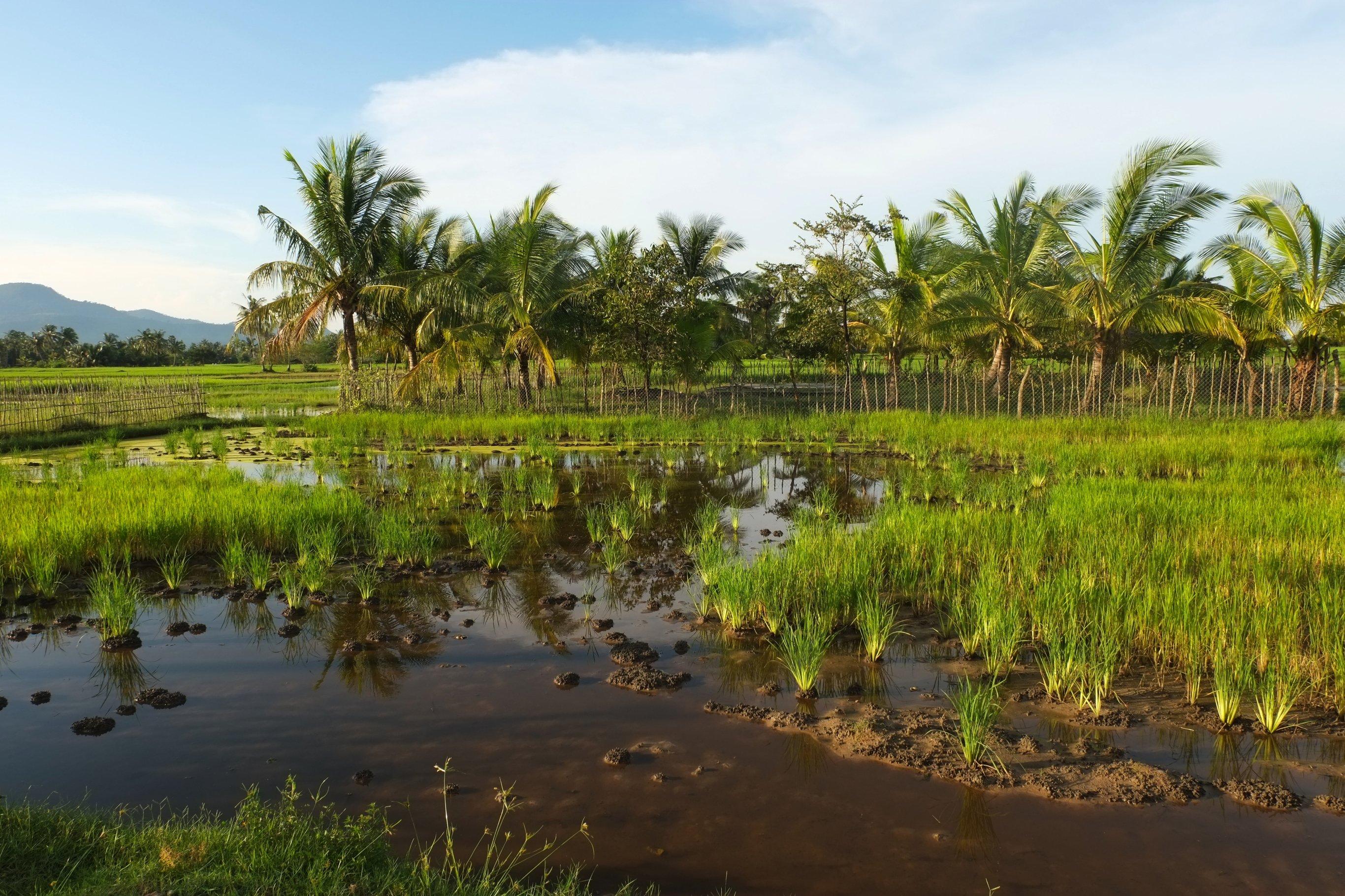 4-Day Explore Kampot - Cambodia Itinerary