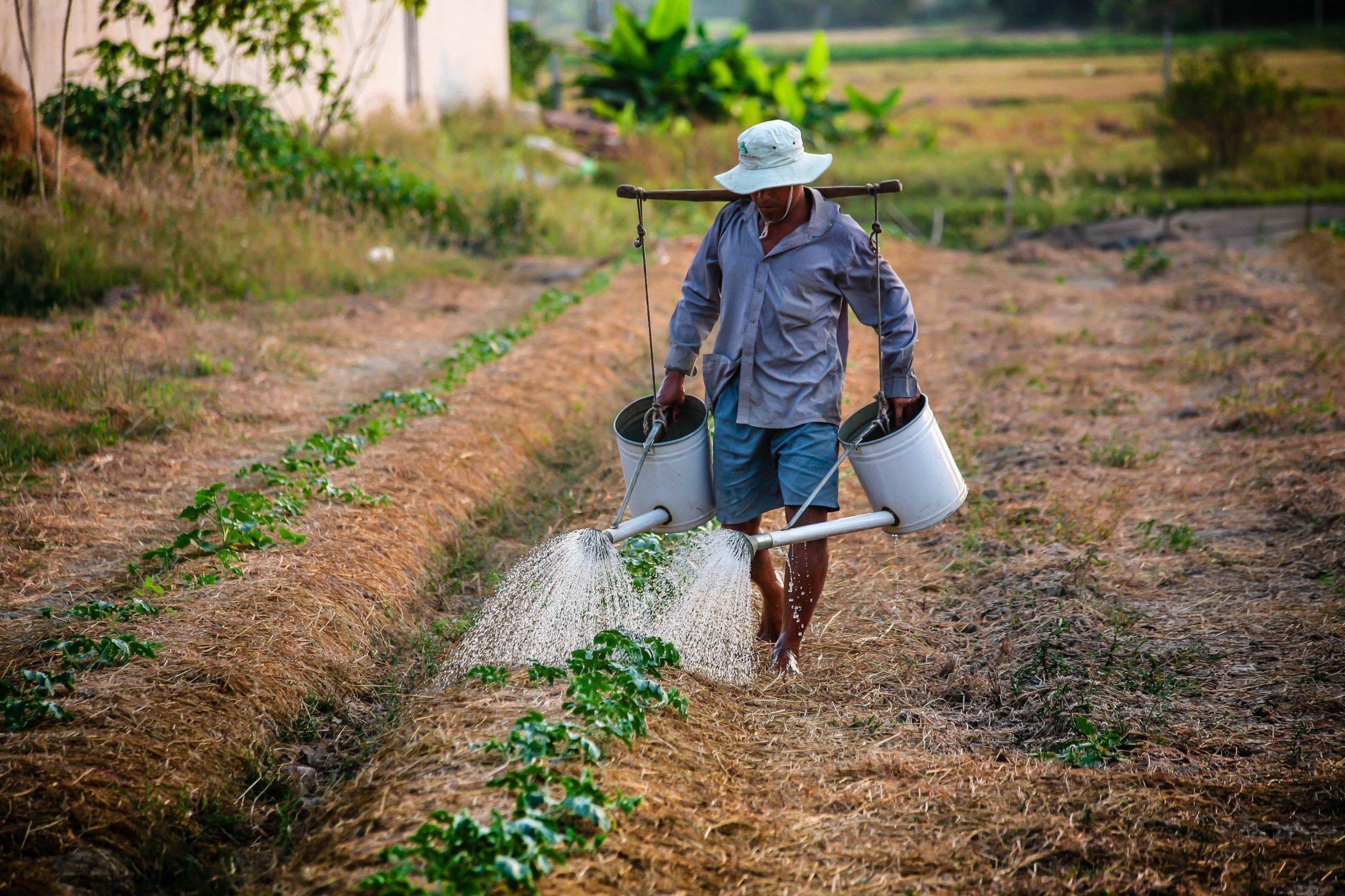 2-Day Pu Bin Spice Hill Farm Stay - Vietnam Itinerary